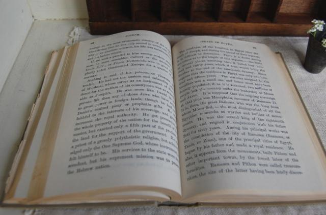 読書の習慣と記憶に自信がない方はインプットからアウトプットを48時間以内に